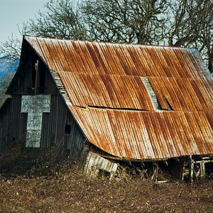 Rusted Tin Roof