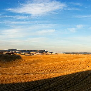 The Palouse at Sunset