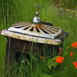 poppies and old stove