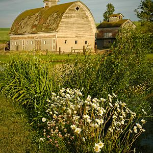 Favorite Barn