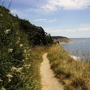 Whidbey Trail