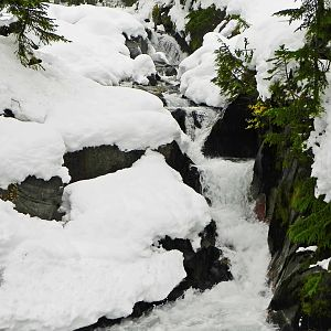 Falls at Mount Rainier