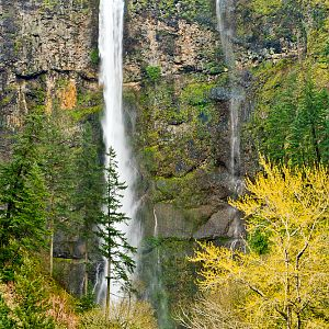 Multnomah Falls & Fast Spring Waters