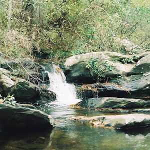 Cheaha SP, Alabama