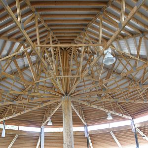 Round House Rafters