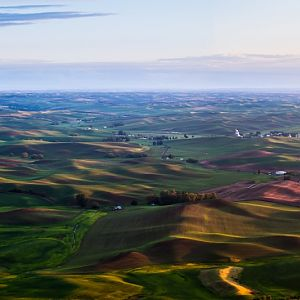 Palouse Panorama