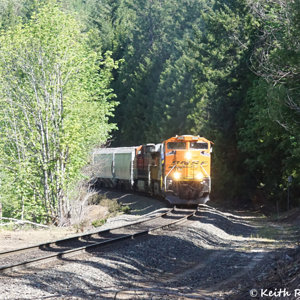 Southbound BNSF Grain Train