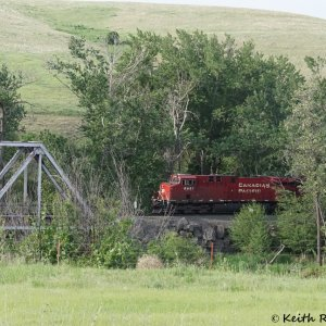 Westbound UP/CP Grain Train