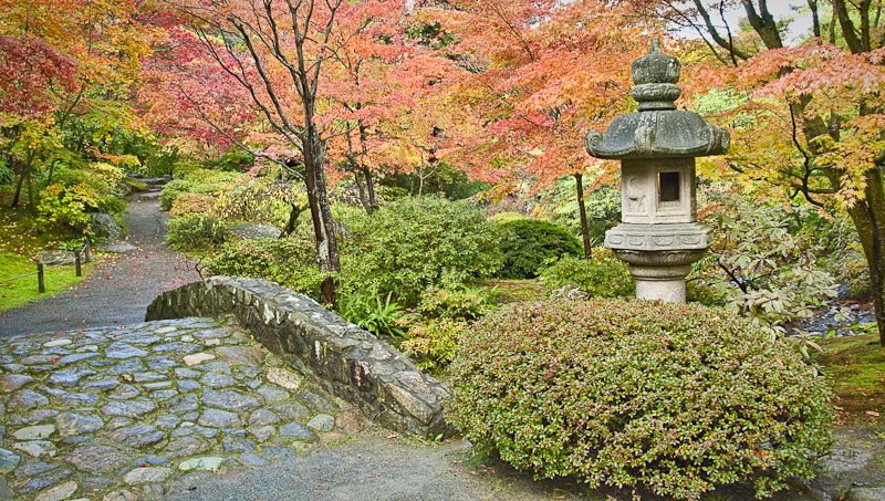 Fall at the Japanese Garden